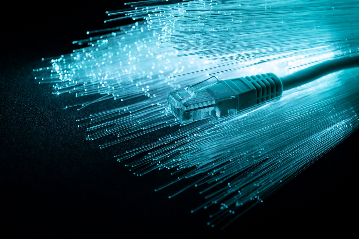 Blue fiber optic cables with an ethernet cable